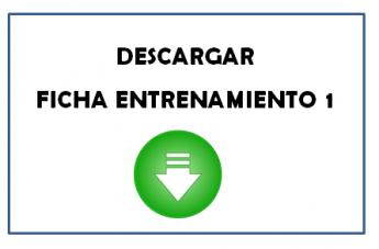 FICHA DE ENTRENAMIENTO 11